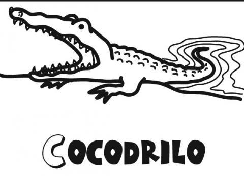 Imágenes infantiles de cocodrilo para colorear