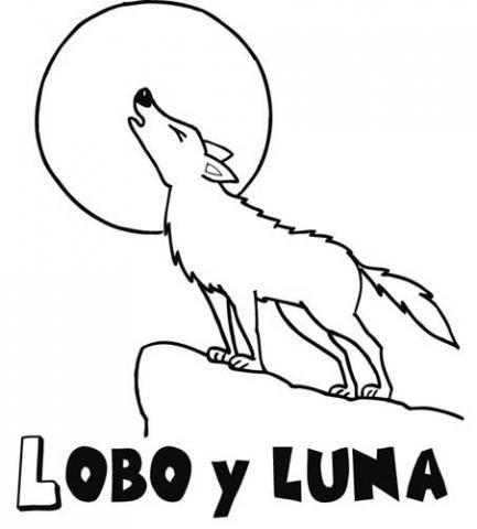 de un lobo para colorear Dibujos de animales para nios
