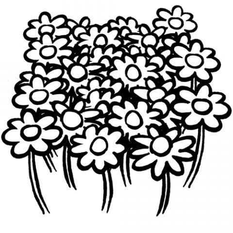 Dibujos de un campo de flores para colorear por los niños.