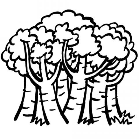 Imprimir Dibujos de rboles en primavera para colorear con los nios