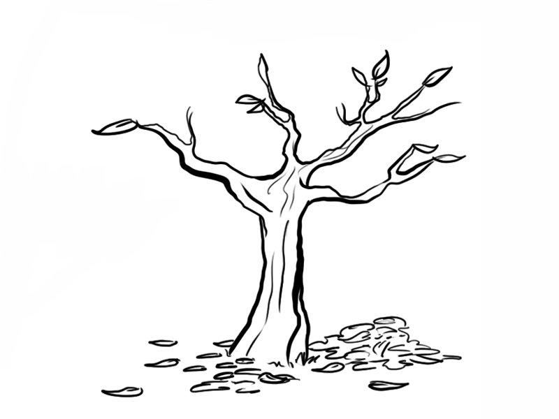 Árbol y hojas: Dibujos para colorear