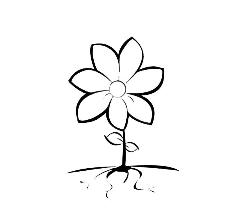 Dibujos de primavera para pintar. Flor de seis pétalos para los niños