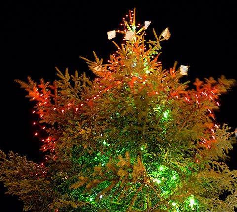 Tarjetas de navidad online para enviar