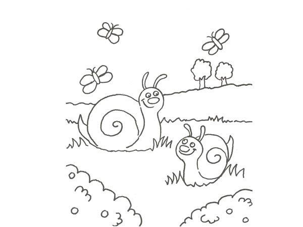 Dibujo de caracoles y mariposas para pintar con niños