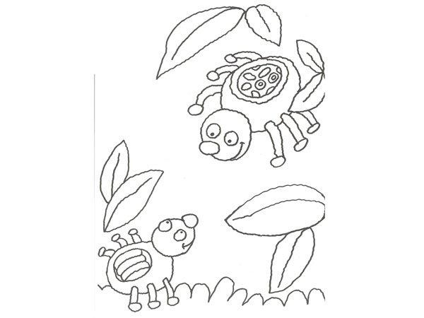 Dibujo De Una Araña Para Colorear Con Niños