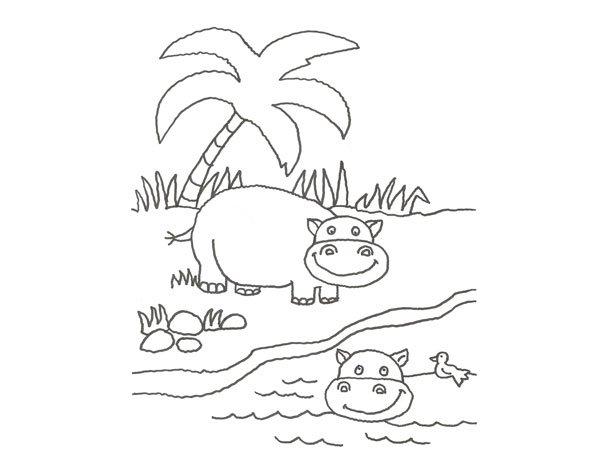 Dibujo de un hipopótamo para colorear con niños