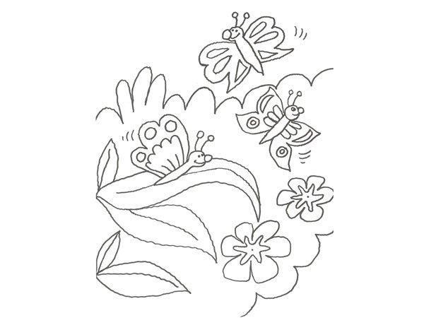 Dibujo de una mariposa en la selva para colorear