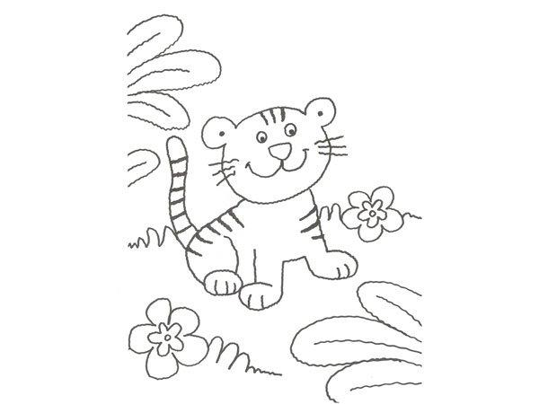 Dibujo De Un Tigre De La Selva Para Colorear Con Ninos
