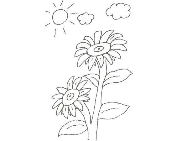 Dibujo De Dos Flores Grandes Para Colorear Con Niños