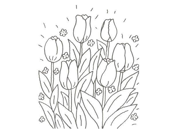 Dibujo de un tulipán para que pinten los niños