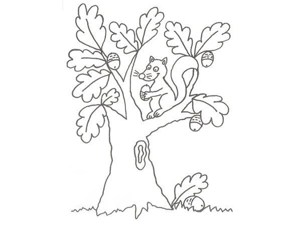 Dibujo de una ardilla en un árbol para pintar con niños