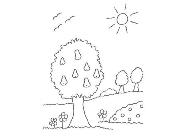 El Arbol De Los Frutos Para NiÑos: Dibujo De Un árbol Con Peras Para Colorear Con Niños