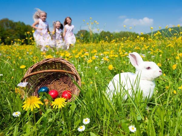 Persiguiendo al conejo de Pascua. Tarjeta virtual para los niños