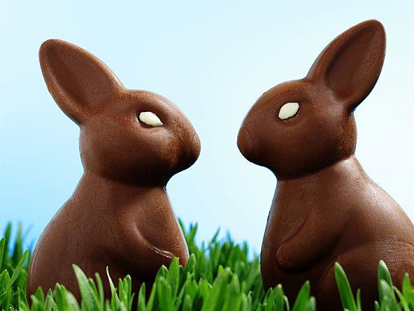 Conejos de Pascua de chocolate. Tarjeta virtual para los niños