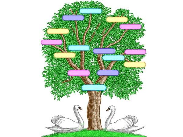 Modelos de arbol genealogico para niños - Imagui