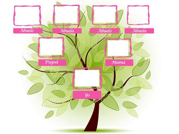 Árbol Genealógico Gratis - Genealogía e Historia familiar