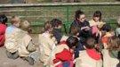 Campamentos de Navidad 2013 para niños en el Zoo de Barcelona