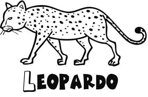 Leopardo: Dibujos para colorear