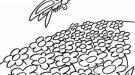 Mariposa en un campo de flores. Dibujo para pintar
