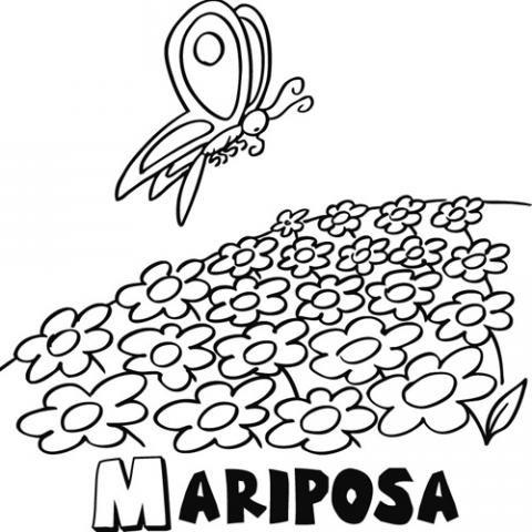 Campos para dibujar - Imagui