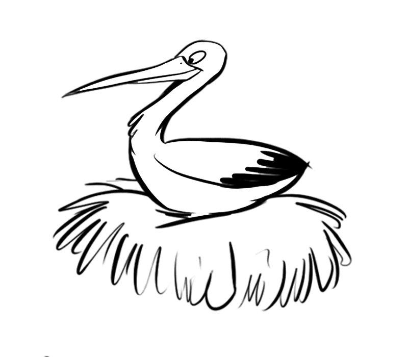 Cigüeña En El Nido: Dibujos Para Colorear