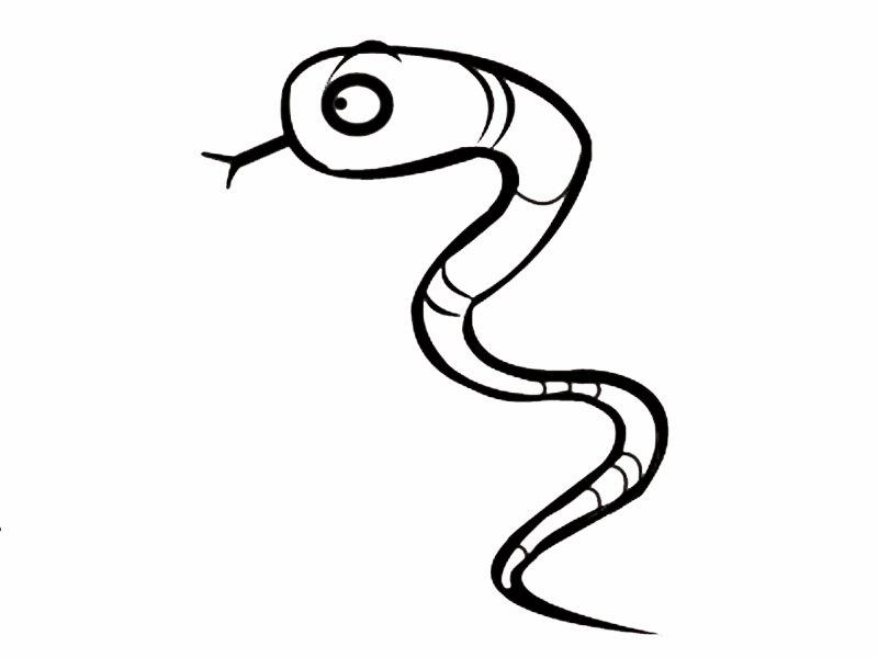 Serpiente de perfil: Dibujos para colorear