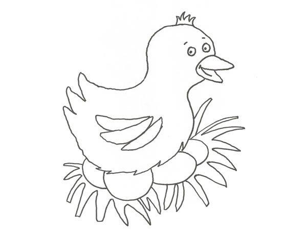Dibujo de una gallina poniendo huevos para colorear con niños