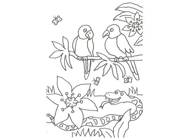 17605-4-dibujo-de-un-tigre-y- ...