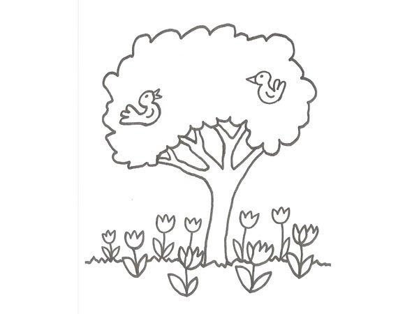 Dibujo de árboles y pájaros para pintar con niños