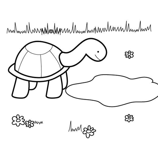 dibujo tortuga colorear: