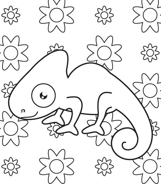 Camaleón invisible: dibujo para colorear e imprimir