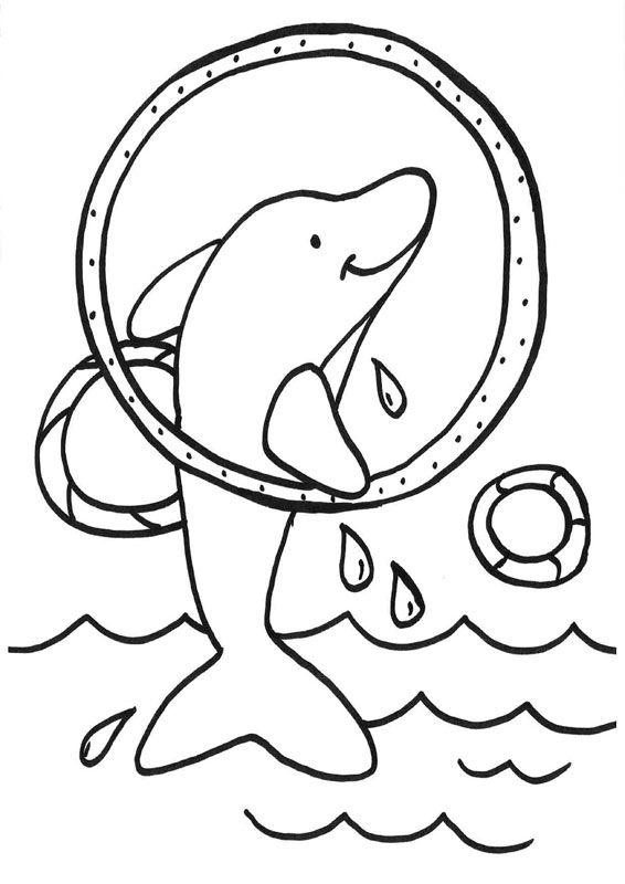 Dibujos para colorear de Delfines, Delphinidae, Delfín