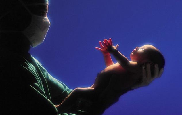 Vídeo de un parto