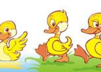 Five Little Ducks Canciones Para Niños En Inglés