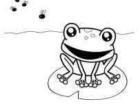 rana cazando moscas dibujo para colorear e imprimir