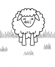 Ovejita negra: dibujo para colorear e imprimir