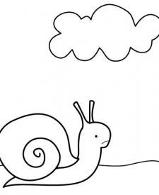Caracol feliz: dibujo para colorear e imprimir