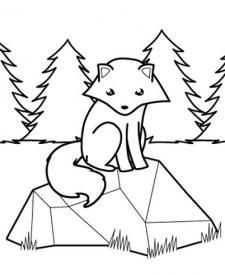Zorro polar en el bosque: dibujo para colorear e imprimir