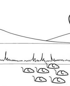 Flautista de Hamelin y sus ratones: dibujo para colorear e imprimir
