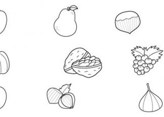Frutas de otoño: dibujo para colorear e imprimir
