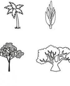 Árboles: dibujo para colorear e imprimir