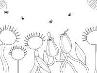 Dibujos de insectos en Conmishijos.com