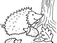 Dibujos Para Colorear En Conmishijoscom Página 35