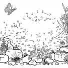 Dibujo de unir puntos de una tortuga: dibujo para colorear e imprimir