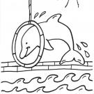 Espectáculo de delfines: dibujo para colorear e imprimir