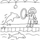 Delfín y adiestradora: dibujo para colorear e imprimir