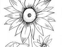 Colorea Flores En Conmishijoscom