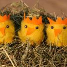 Pollitos de peluche: manualidad para niños
