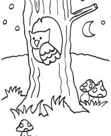 Búho en un tronco: dibujo para colorear e imprimir