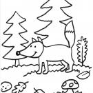 Zorro en el bosque: dibujo para colorear e imprimir
